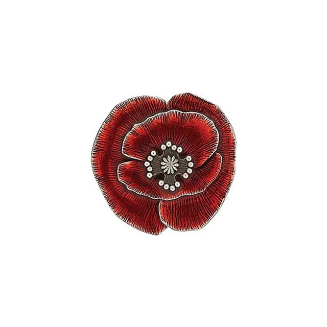 Remembrance Poppy Scatter Pin