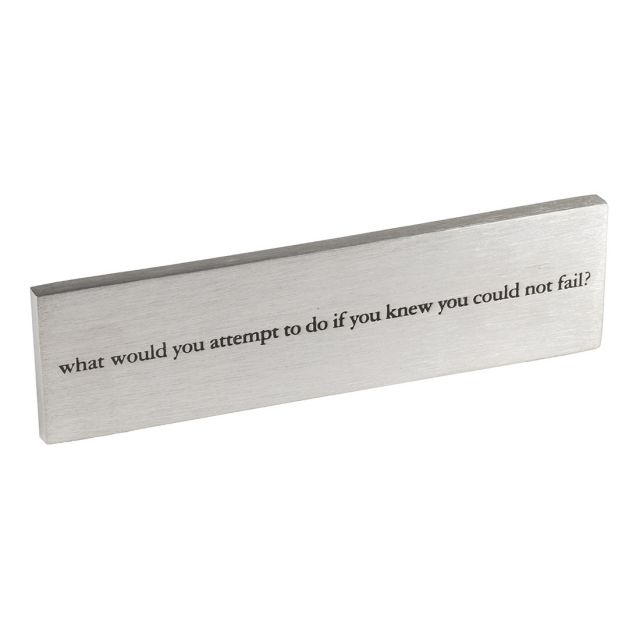 What Would You Do paperweight