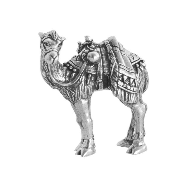 Camel With Head Turned